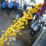 Quack, quack – it's the Clonmany Christmas duck race