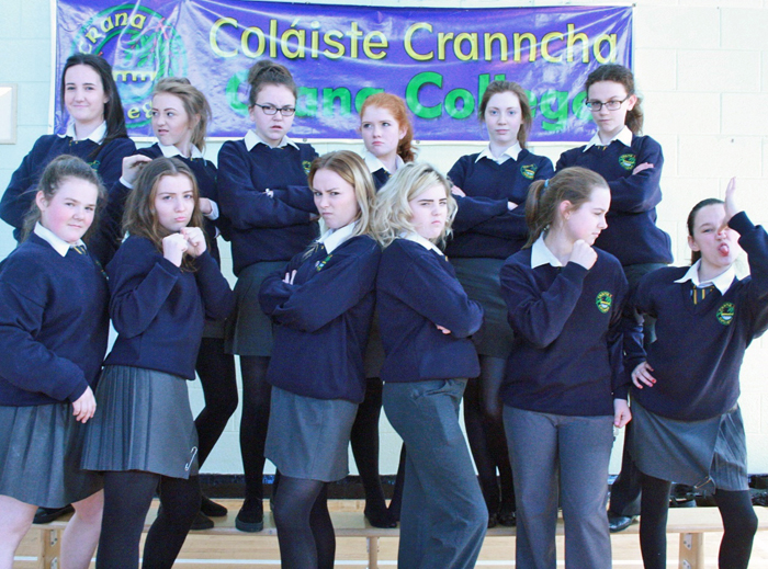 Page 12 Crana College's entry Musicala through to All-Ireland semi final of School Talent Search