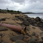 Communities urged to join coastal cleanup